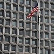 Flag And Windows Art Print