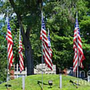 Flag - Illinois Veterans Home - Luther Fine Art Art Print