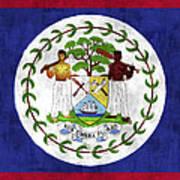 Flag Of Belize Art Print