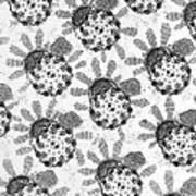 Flagellar Membranes Of Moth Sperm, Tem Art Print