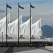 Flags At The Sails  Art Print