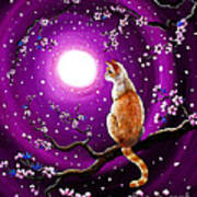 Flame Point Siamese Cat In Dancing Cherry Blossoms Art Print