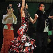 Flamenco Series No 13 Art Print