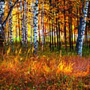 Flaming Grass Art Print
