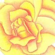 Flaming Yellow Rose Art Print