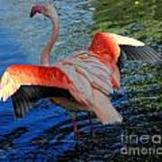 Flamingo Flight Art Print