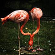 Flamingo Mirrored Art Print