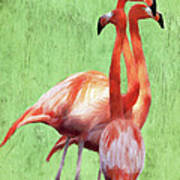 Flamingo Twist Art Print by Jeff Kolker