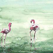 Flamingos In Camargue 02 Art Print