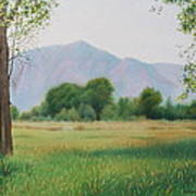 Flatirons From Dry Creek Meadow Art Print