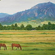 Flatirons From Jay Road Horse Farm Art Print