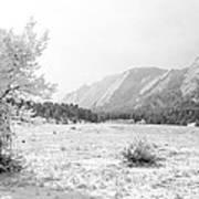 Flatirons Tree - Winter Art Print