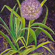Fleur D Allium With Iris Leaves Backup Art Print