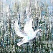 Flight Against Odds Art Print