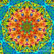 Flight Mandala Art Print
