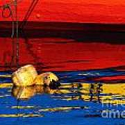 Floating Buoys And Reflections Art Print