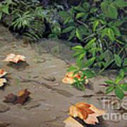 Floating Leaves By George Wood Art Print