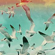 Flock Of Seagulls, Miami Beach Art Print