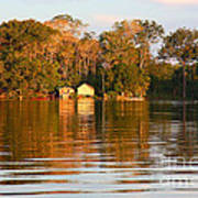 Flooded Amazon With Houses Art Print