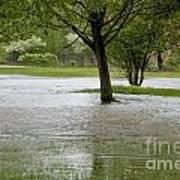 Flooded Park Art Print