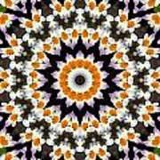Flora Kaleidoscope Art Print