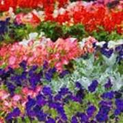 Floral Fantasy Print by Dan Sproul