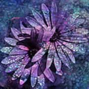 Floral Fiesta - S14c Art Print