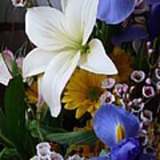 Floral Rhapsody Art Print