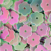 Floral Shape Sequins Art Print