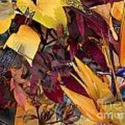 Floral Tiles Art Print