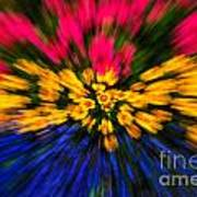 Floral Triple Zoom Art Print