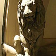 Florence Lion Art Print