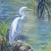 Florida Keys Egret Art Print