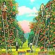 Florida Orange Pickers 1920 Art Print by Annette Allman