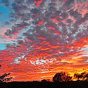 Florida Spring Sunset Art Print