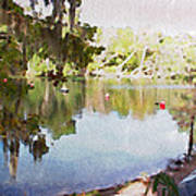 Florida Springs Waiting Art Print