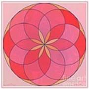 Flower 126 Art Print