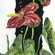 Flower Anthurium 01 Elena Yakubovich Art Print by Elena Yakubovich