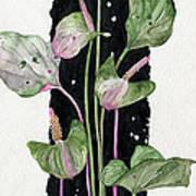 Flower Anthurium 02 Elena Yakubovich Print by Elena Yakubovich