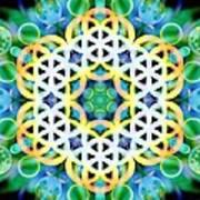 Flower Bubbles Art Print