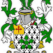 Flower Coat Of Arms Irish Art Print