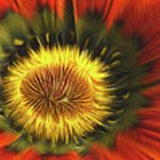 Flower Fractal Art Print
