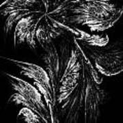 Flower In Black-and-white Art Print