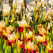 Flower - Iris - Mildred Presby 1923 Art Print by Mike Savad
