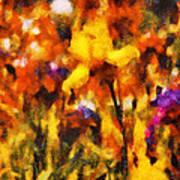 Flower - Iris - Orchestra Art Print by Mike Savad