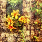 Flower - Lily - Yellow Lily  Art Print by Mike Savad