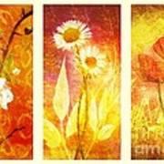 Flower Love Triptic Art Print