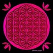 Flower Of Life - Pink Art Print