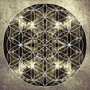 Flower Of Life Silver Art Print