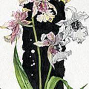 Flower Orchid 06 Elena Yakubovich Art Print by Elena Yakubovich
